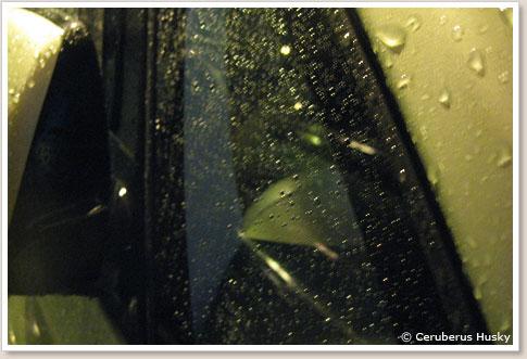 運転席側(撥水コート)