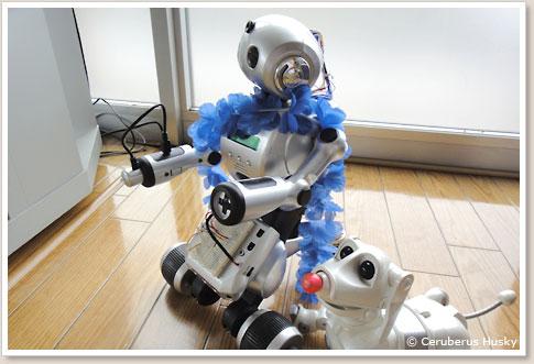 ロボット2種類